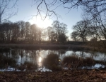 View of one of the ponds at Brown Moss copyright Freshwater Habitats Trust