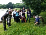 Wetland plant ID training at Brown Moss copyright Pete Case