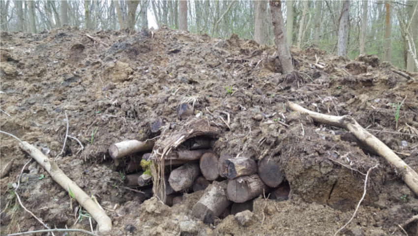 Example of hibernacula created at Rushbeds Wood