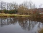 Pond at North Blackpool Pond Trail copyright Anne Heathcote