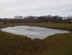 View over the pond trail copyright Anne Heathcote