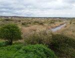The old claypits ot Orton Pits copyright Pete Case