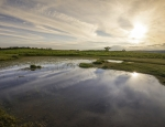 The Begwns pond B6 at dusk copyright Dainis Ozols