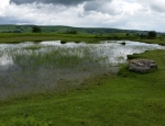 The Begwns pond B6 copyright Hannah Shaw