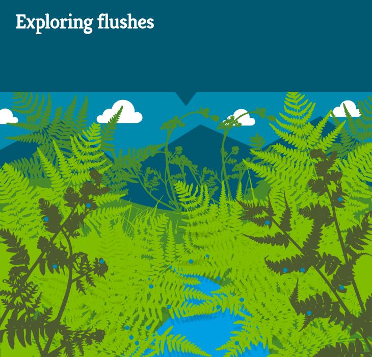 Habitat-map-sections-flush