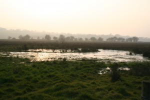 A small water body in the Weaver Valley, Cheshire