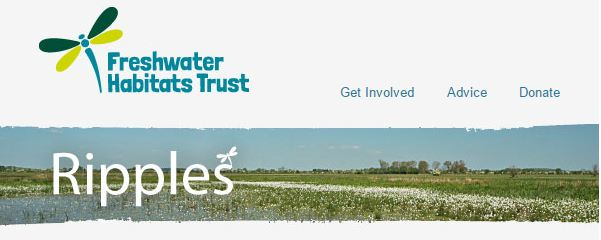Ripples banner 2015 screen capture