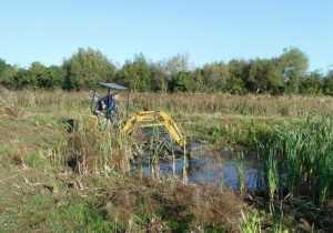 Cutteslowe Park pond management Oct 2013