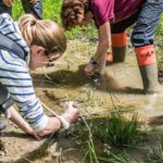 Flagship Ponds: Help monitor and manage the best freshwater sites in the country