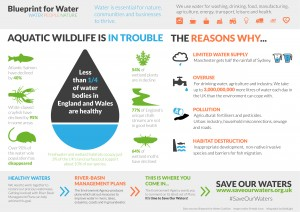 Save Our Waters Infographic