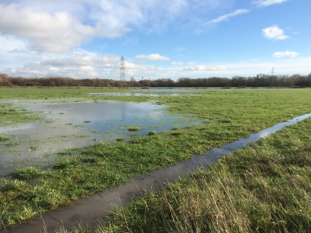River Thames floodplain