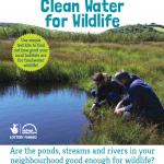 Clean Water for Wildlife Leaflet
