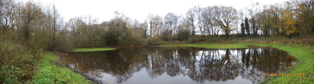 A pool at Brown Moss Flagship Pond site in 2015 (c) Mags Cousins/Natural England