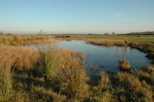 Otmoor in Oxfordshire