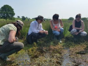 A PondNet training event at the Begwns Flagship site earlier this year.