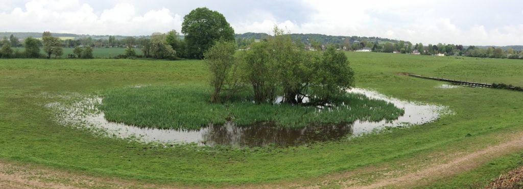 Cock Marsh pond in spring, by Simon Barber