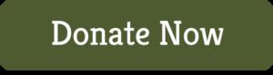 donate-now-button-khaki-green