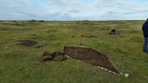 Turf stripping to recreate habitat for Meesia uliginosa Petalophyllum ralfsii and Bryum warneum at Aberffraw 12Oct2016