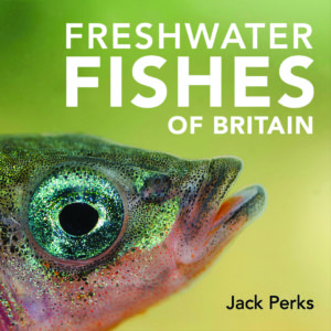 freshwater-fish-frontcover-final