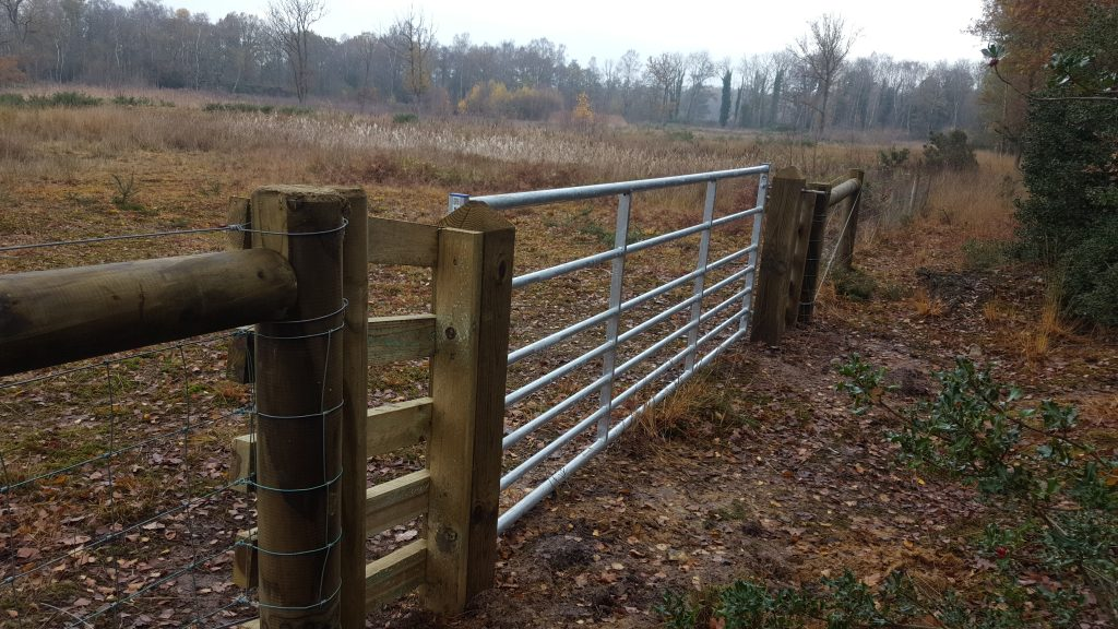 A new gate installed in a fence between Stow Bedon and Thompson Commons